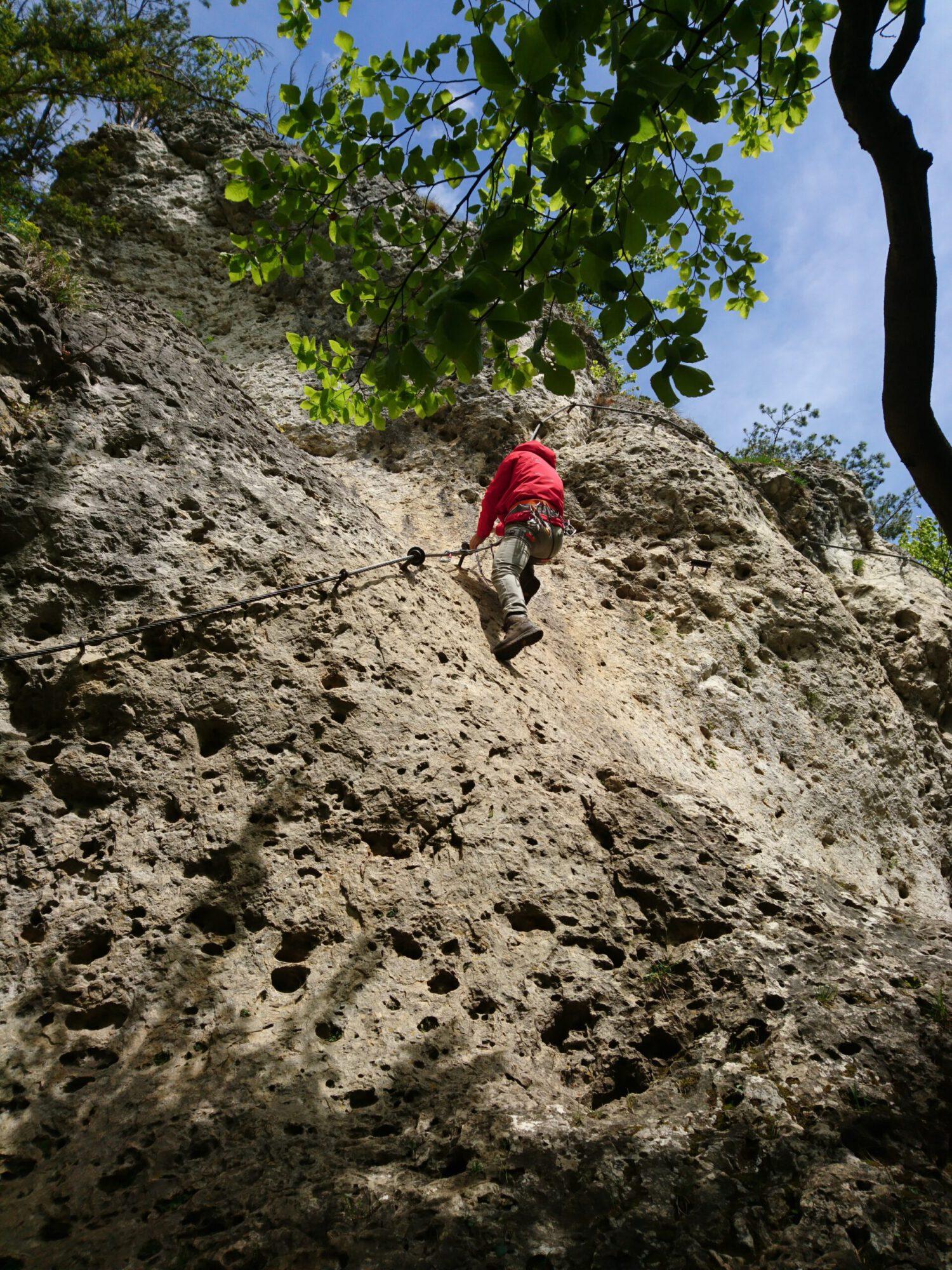Höhenglücksteig Hirschbach